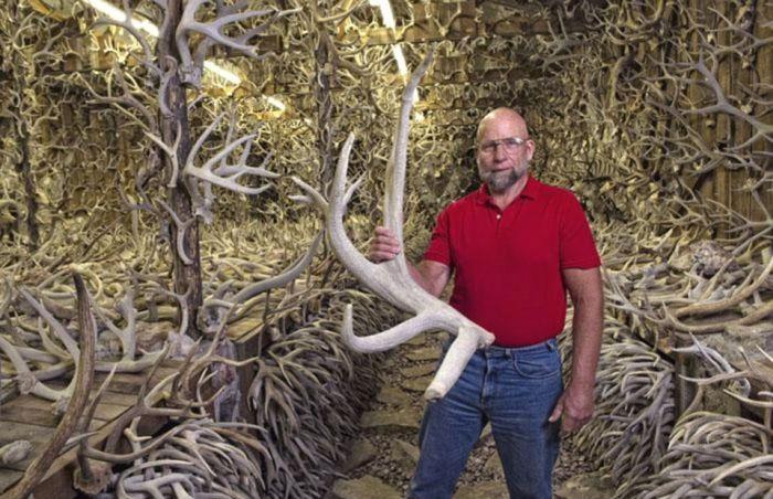 Коллекционер собрал 15 000 рогов различных животных (9 фото)