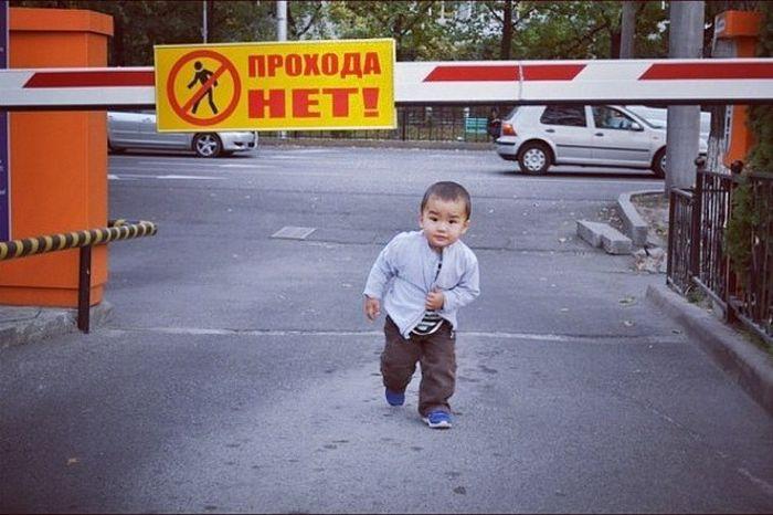 Люди, идущие против системы (37 фото)