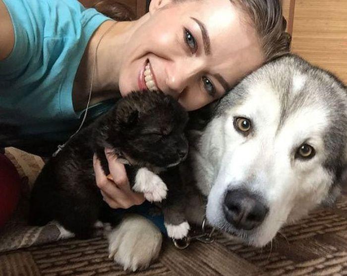 Как девушка новорожденного щенка спасала (2 фото)