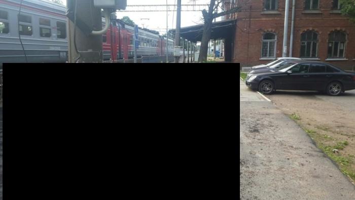 В Санкт-Петербурге асфальт уложили прямо поверх растущей травы (4 фото)