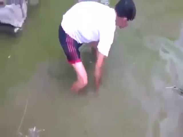 Ловля электрического угря руками
