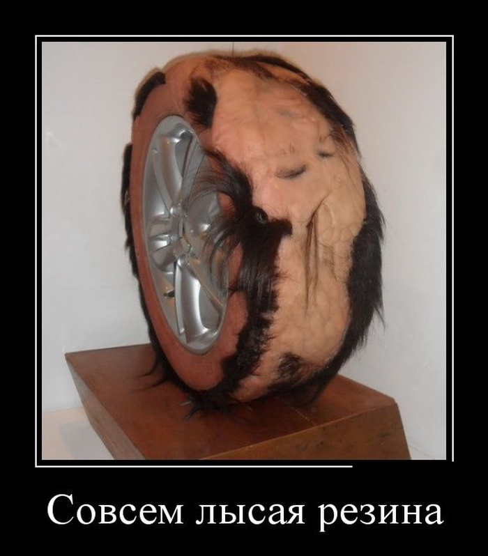 http://trinixy.ru/pics5/20160616/demotivatory_05.jpg