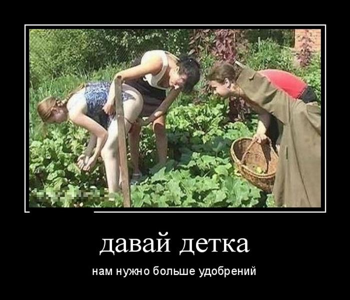 http://trinixy.ru/pics5/20160616/demotivatory_22.jpg
