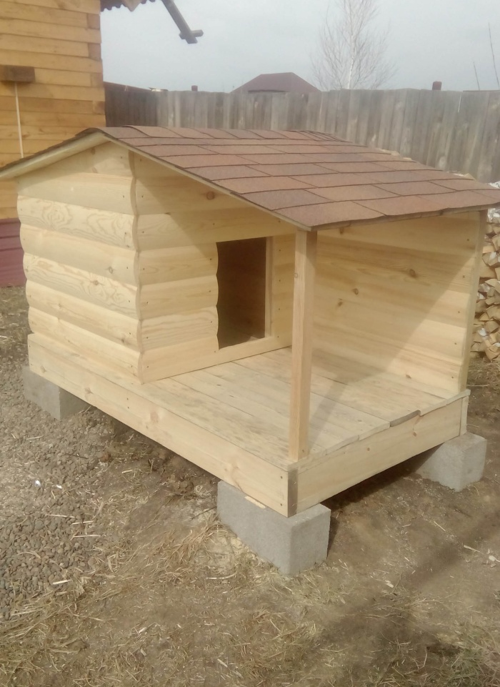 Прикольная будка для собаки своими руками (5 фото)