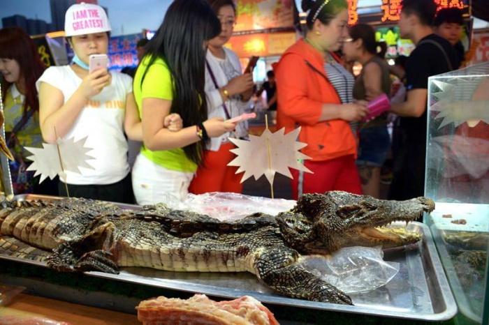 Шашлык из крокодила (5 фото)