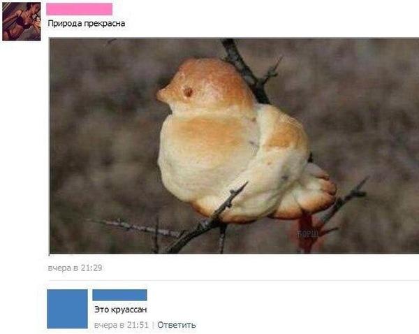 Странный юмор социальных сетей (46 фото)