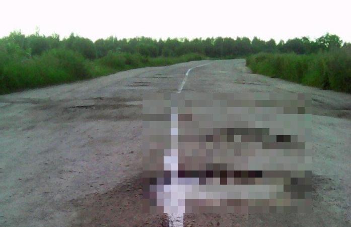 Дорожная разметка в Рязанской области  (3 фото)