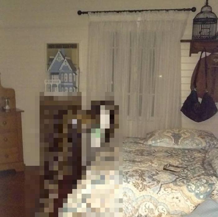 Австралийка обнаружила в своем доме 40-килограммового питона (4 фото + видео)