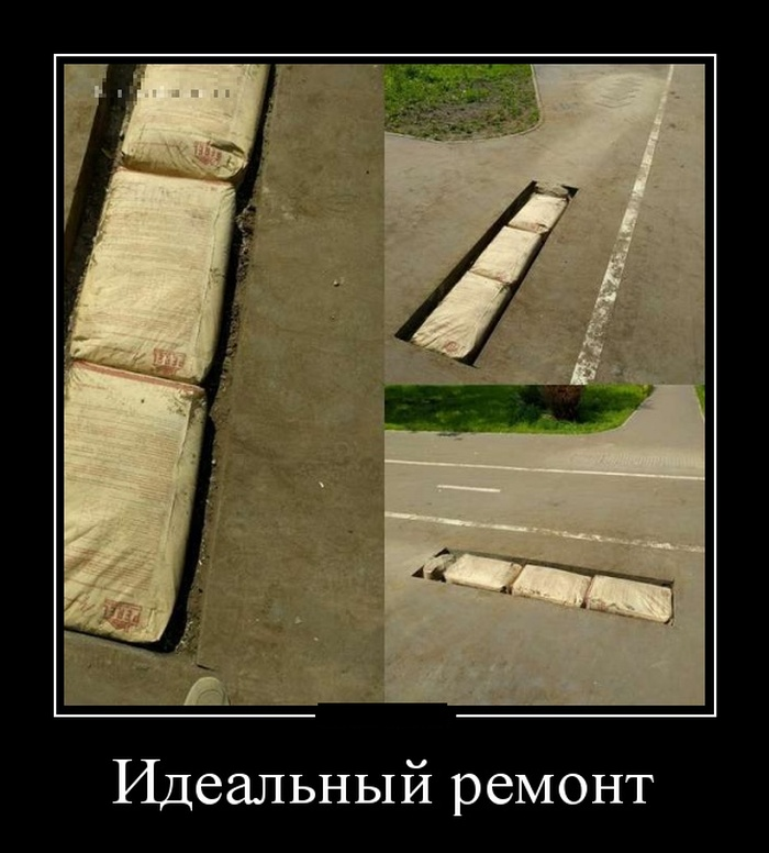 http://trinixy.ru/pics5/20160623/demotivatory_15.jpg