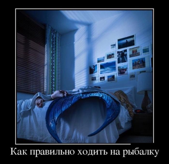 http://trinixy.ru/pics5/20160623/demotivatory_29.jpg