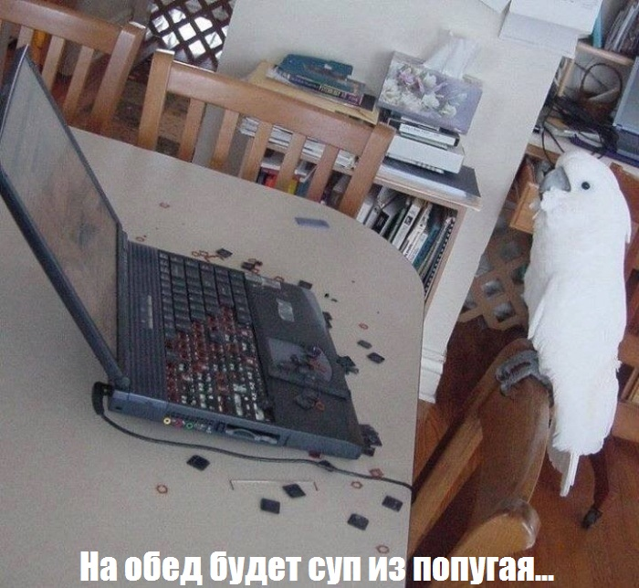 http://trinixy.ru/pics5/20160623/podborka_vecher_49.jpg