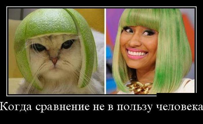 http://trinixy.ru/pics5/20160630/demotivatory_11.jpg