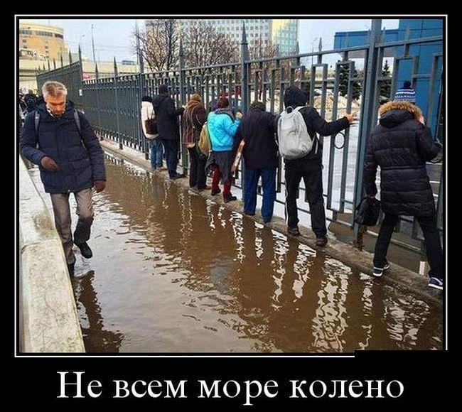 http://trinixy.ru/pics5/20160630/demotivatory_16.jpg