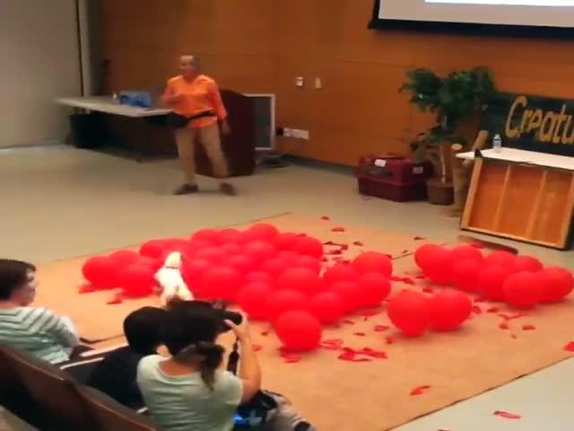 Собака устанавливает рекорд по лопанию шариков