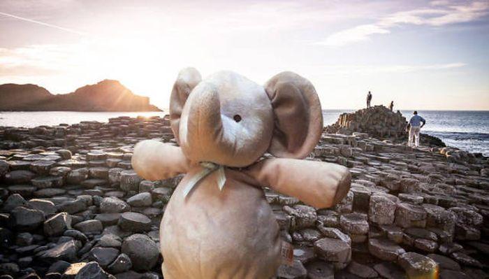 Игрушка, «путешествующая» по миру (50 фото)
