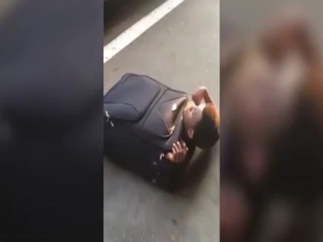 Африканский нелегал приехал в Швейцарию в чемодане
