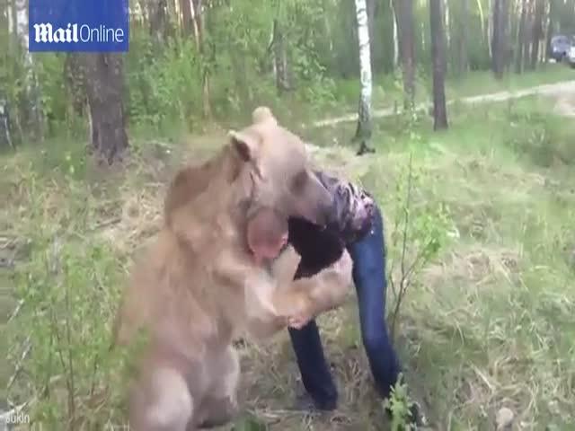 Борьба русского парня с медведем шокировала иностранцев