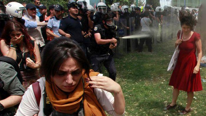 Ненасильственное сопротивление протестующих (24 фото)