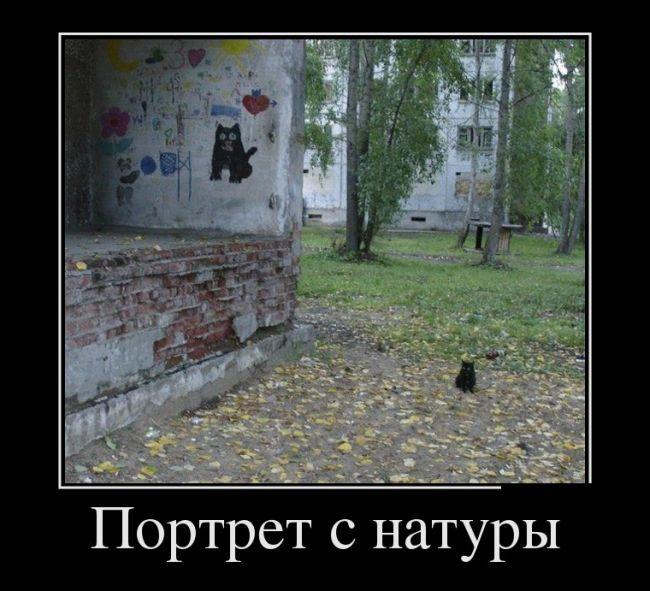 http://trinixy.ru/pics5/20160714/demotivatory_02.jpg