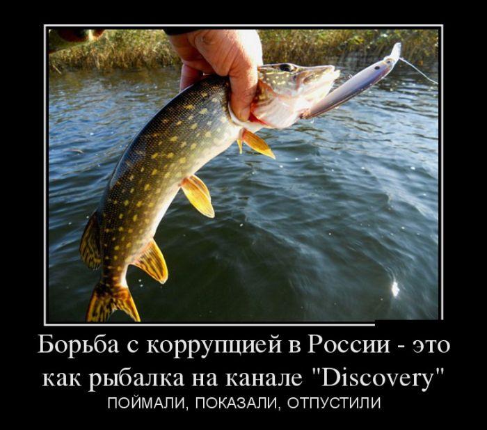http://trinixy.ru/pics5/20160714/demotivatory_21.jpg