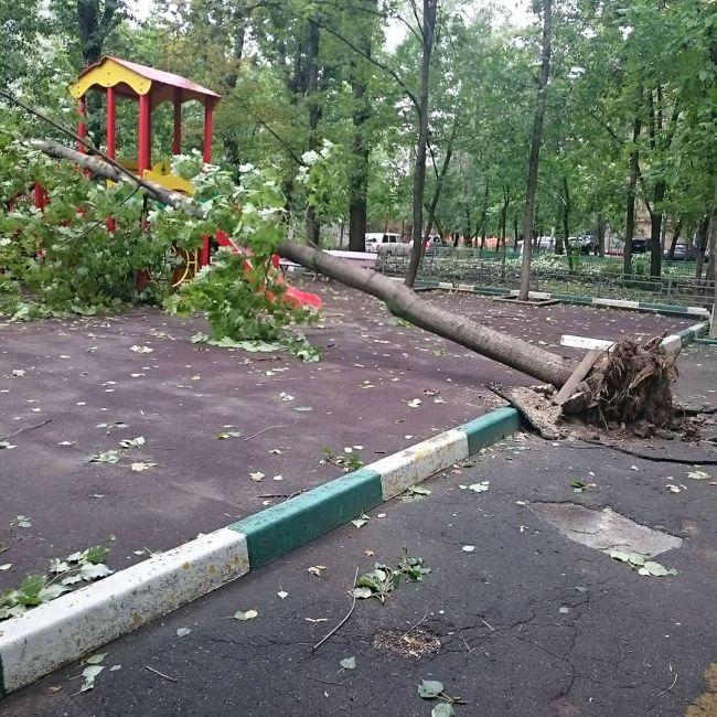 На Москву обрушилась сильнейшая за последние 28 лет гроза (20 фото + видео)