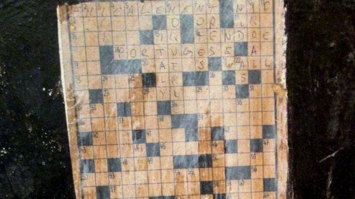 В музее Нюрнберга пожилая женщина разгадала кроссворд стоимостью 116 тысяч евро (2 фото)