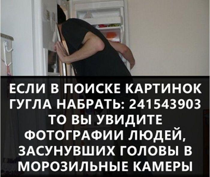https://cdn.trinixy.ru/pics5/20160719/interesnie_fakti_01.jpg