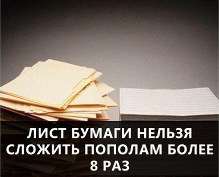 https://cdn.trinixy.ru/pics5/20160719/interesnie_fakti_24.jpg