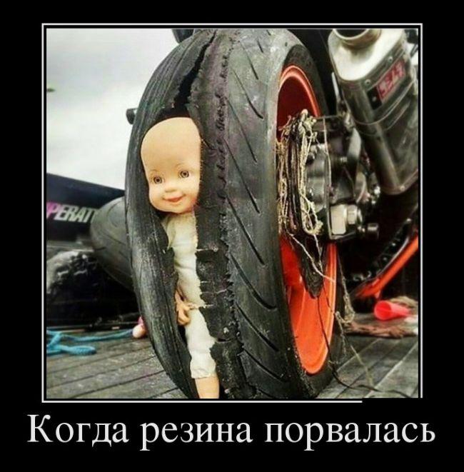http://trinixy.ru/pics5/20160721/demotivatory_29.jpg