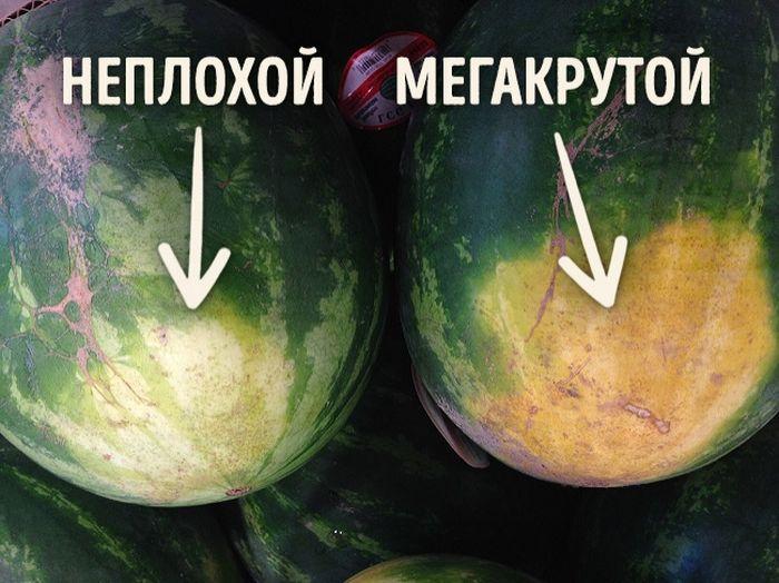 Как выбрать вкусный арбуз (5 фото)