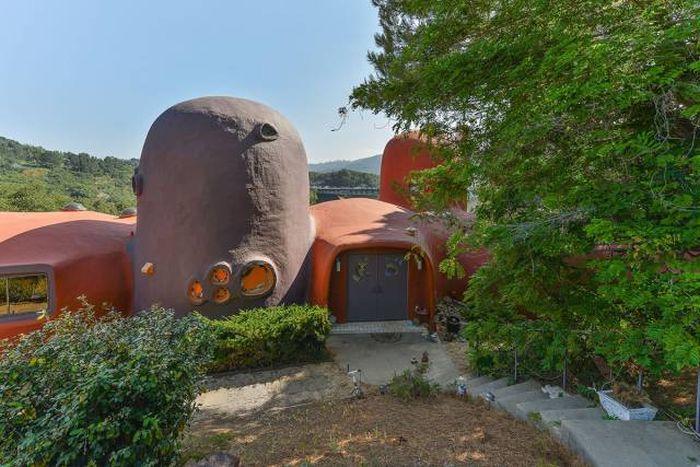 Необычный дом в Калифорнии (21 фото)