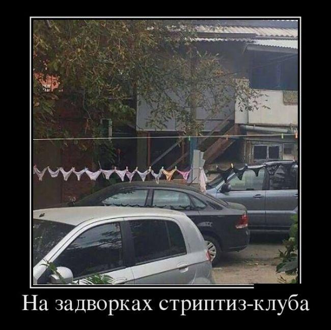 http://trinixy.ru/pics5/20160729/demotivatory_05.jpg