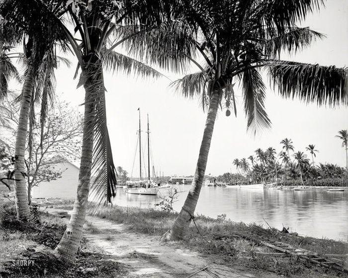 Как менялся Майами (17 фото)