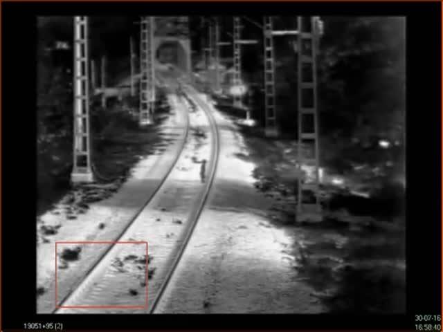 Охранники РЖД спасли 3-летнего ребенка, едва не попавшего под поезд