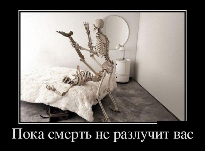 http://trinixy.ru/pics5/20160805/demotivatory_24.jpg