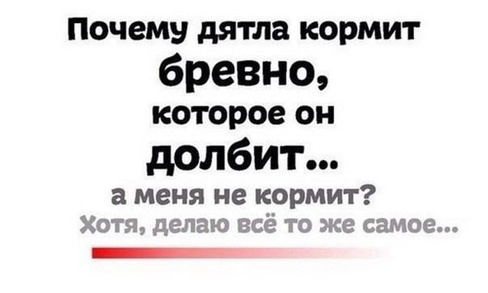 http://trinixy.ru/pics5/20160805/podborka_dnevnya_10.jpg