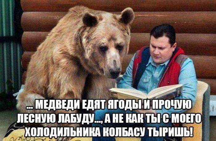 http://trinixy.ru/pics5/20160805/podborka_dnevnya_41.jpg