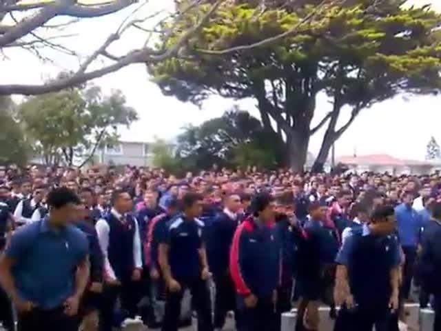 Ритуальный танец «Хака» в исполнении студентов