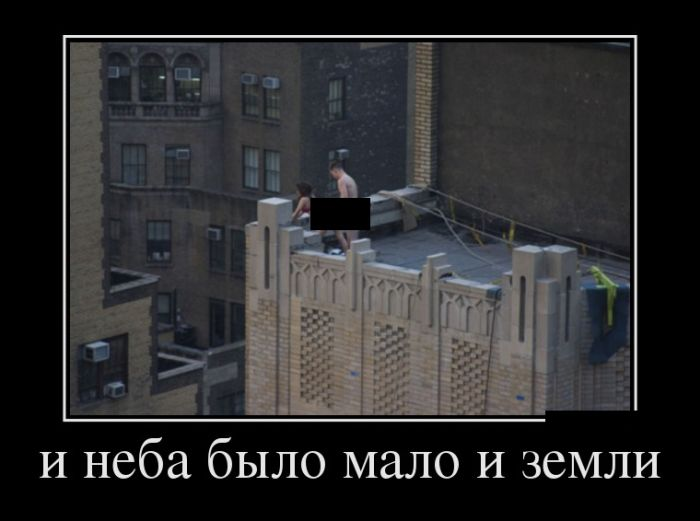 http://trinixy.ru/pics5/20160811/demotivatory_17.jpg