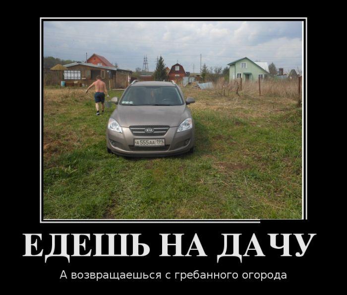 http://trinixy.ru/pics5/20160811/demotivatory_23.jpg