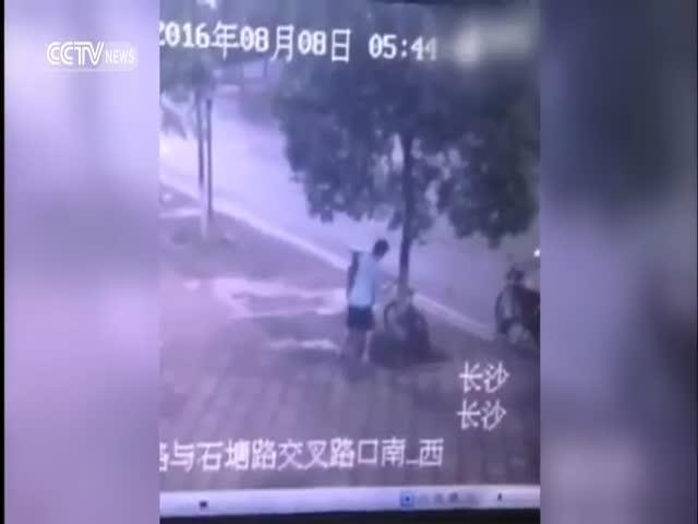 Китаец спилил дерево, чтобы украсть велосипед