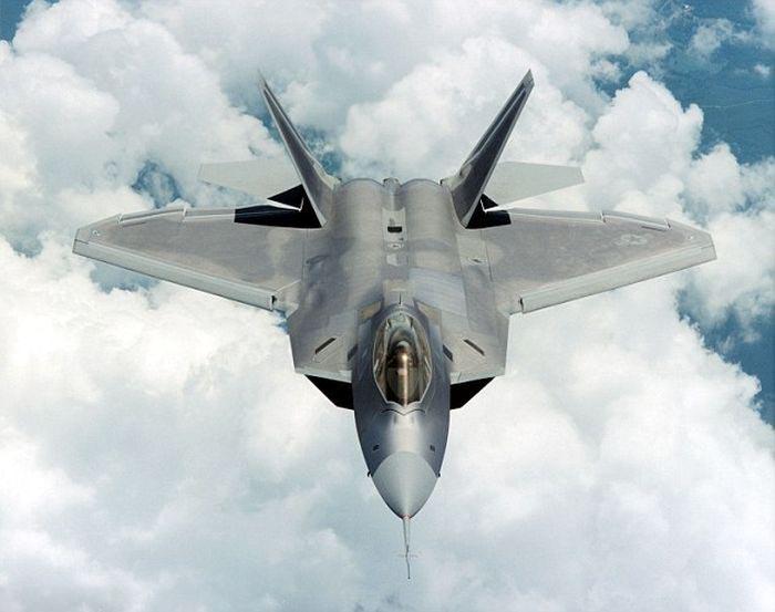 Пчелы облюбовали новейший американский истребитель F-22 Raptor (5 фото)