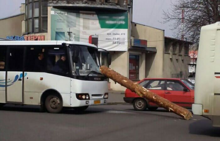 Водителю автобуса невероятно повезло (4 фото)