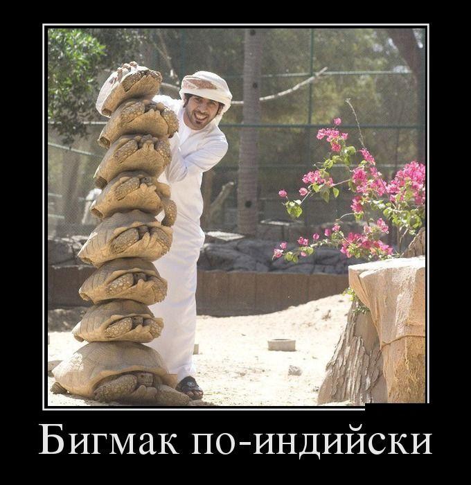 http://trinixy.ru/pics5/20160818/demotivatory_16.jpg