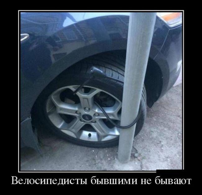 http://trinixy.ru/pics5/20160818/demotivatory_26.jpg