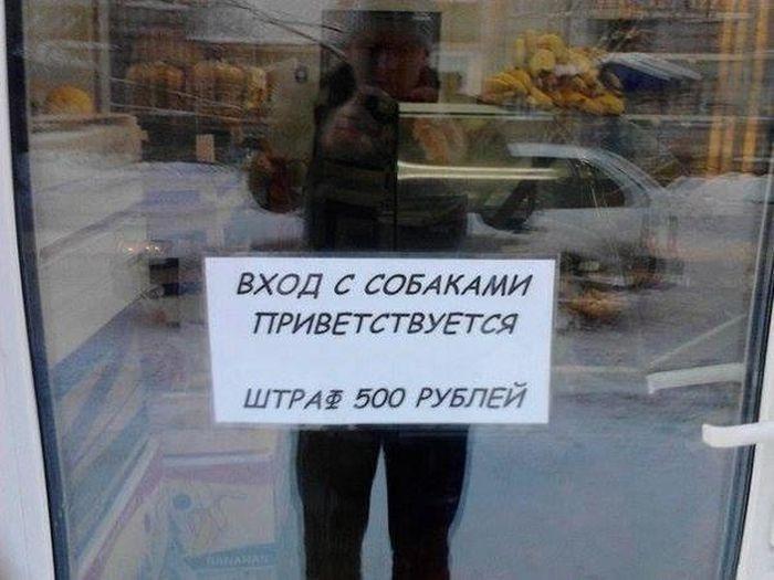 http://trinixy.ru/pics5/20160818/podborka_vecherniya_43.jpg