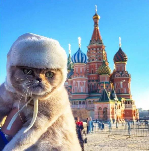 Фото, которые возможно было сделать только в России. Часть 37 (39 фото)
