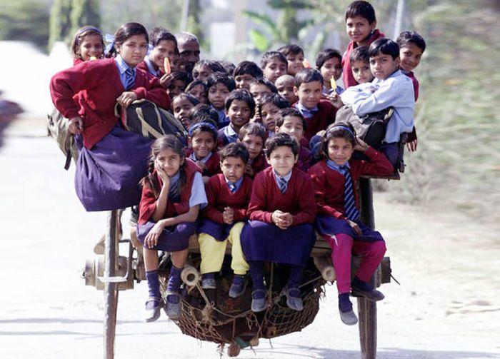 Опасная дорога в школу (24 фото)