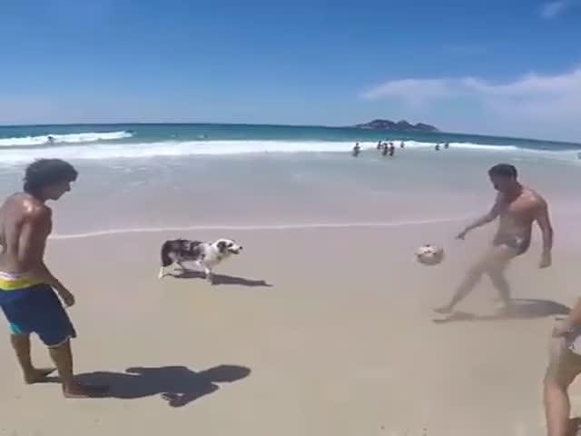 Зрелищная игра в мяч
