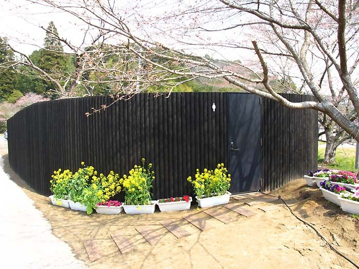 Необычный общественный туалет в Японии (3 фото)